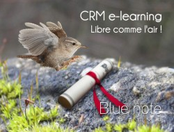 BLUE NOTE SYSTEMS LANCE SA PLATE-FORME D'E-LEARNING